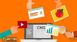 تفاوت cms رایگان و اختصاصی